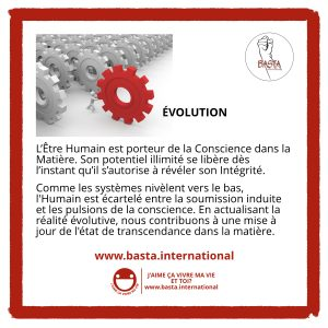Évolution Basta International