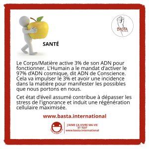 Santé Basta International